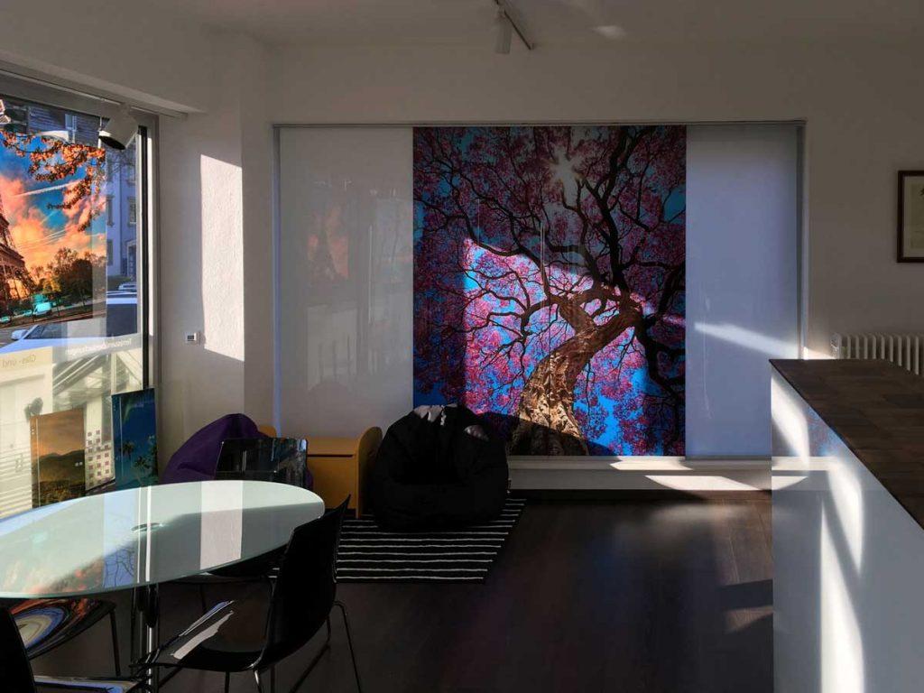 Showroom-Glas-Meissner-Kaiserslautern-01